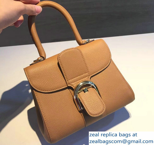 Delvaux Brillant Small Tote Bag In Clemence Leather Brown