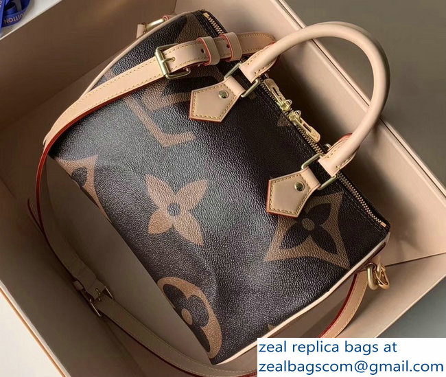 Louis Vuitton Monogram Canvas and Reverse Speedy 25 Bandouliere Bag M41113 2019